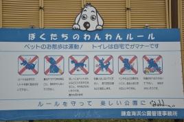 Viel dürfen Hunde hier nicht tun