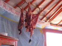 Das Fleisch einer frisch geschlachteten Ziege hängt in der Jurte zum Trocknen.